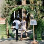 諏訪大社の茅の輪くぐり大祓式に参列した!